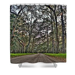 Botany Bay Road Shower Curtain