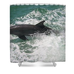 Bottlenose Dolphin Catching A Wave Shower Curtain