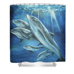 Shower Curtain featuring the painting Bottlenose Dolphins by Thomas J Herring