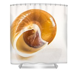 Bottoms Up Shower Curtain by Jean Noren