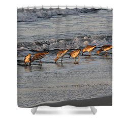Bottoms Up Shower Curtain by Kay Lovingood