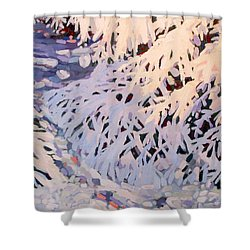 Bough-zers Shower Curtain by Phil Chadwick