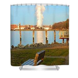 Boulevard's Golden Pillar Shower Curtain