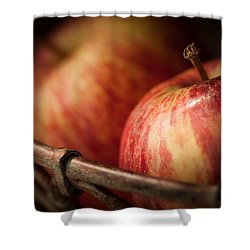 Bountiful Shower Curtain by Amy Weiss