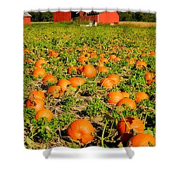 Bountiful Crop Shower Curtain