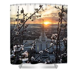 Bountiful Spring Shower Curtain