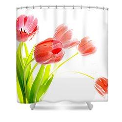 Tulips Flower Bouque In Digital Watercolor Shower Curtain