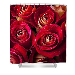 Boutique Roses Shower Curtain by Garry Gay