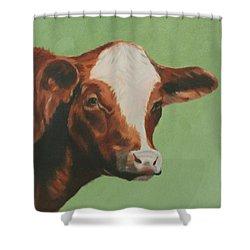 Bovine Beauty Shower Curtain