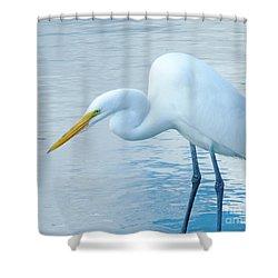 Bow Shower Curtain by Lizi Beard-Ward