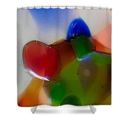 Bow Tied Kiwi Shower Curtain by Omaste Witkowski