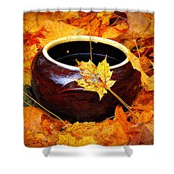Shower Curtain featuring the photograph Bowl And Leaves by Rodney Lee Williams