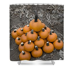 Shower Curtain featuring the photograph Bowling For Pumpkins by David Millenheft