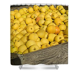 Box Of Golden Apples Shower Curtain by Garry Gay
