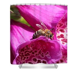 Bracing For A Good Drink Shower Curtain by Lucinda VanVleck