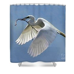 Branch Of Peace Shower Curtain by Jennie Breeze