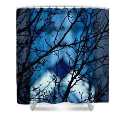Branch Office Shower Curtain