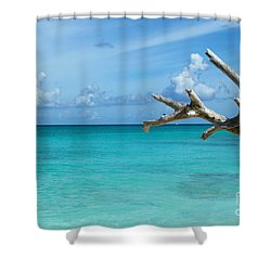 Branch Over The Caribbean Shower Curtain