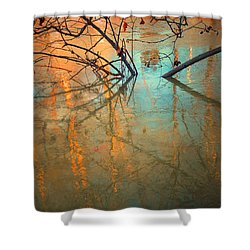 Branches And Ice Shower Curtain by Tara Turner