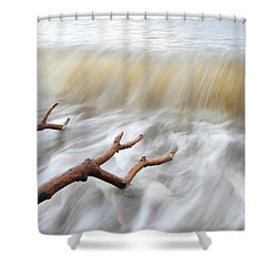 Branches In Water Shower Curtain by Randi Grace Nilsberg