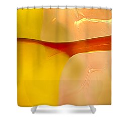 Branches Of Light Shower Curtain by Omaste Witkowski
