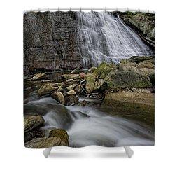 Brandywine Flow Shower Curtain by James Dean
