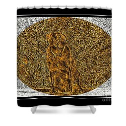 Brass Etching - Oval - Labrador Retriever Shower Curtain by Barbara Griffin