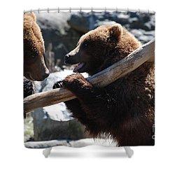Brawling Bears Shower Curtain by DejaVu Designs