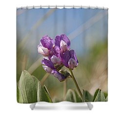 Breathe In The Air No.2 Shower Curtain
