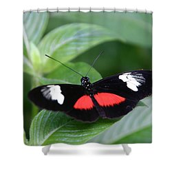 Breathtaking Contrast Shower Curtain by Denyse Duhaime
