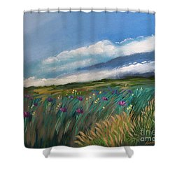 Breezy Day At Mauna Kea Shower Curtain