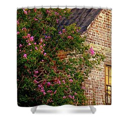 Shower Curtain featuring the photograph Brick And Myrtle by Rodney Lee Williams