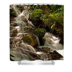 Bridal Veil Fall In May  Shower Curtain by Sabine Edrissi