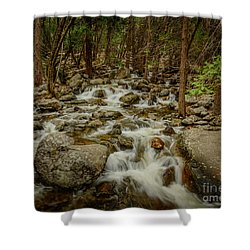 Bridalveil Creek In Yosemite Shower Curtain