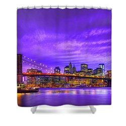 Bridge Of  Dream Shower Curtain by Midori Chan
