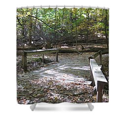 Bridge To The Forest Deep Shower Curtain