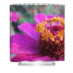 Bridgets Bloom Shower Curtain by Robert ONeil