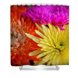 Bright Chrysanthemums Shower Curtain