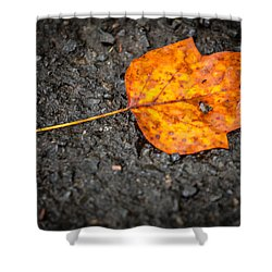 Bright Dark And Alone Shower Curtain by Melinda Ledsome