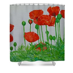 Red Poppies Colorful Flowers Original Art Painting Floral Garden Decor Artist K Joann Russell Shower Curtain by Elizabeth Sawyer