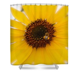 Shower Curtain featuring the photograph Vibrant Bright Yellow Sunflower With Honey Bee  by Jerry Cowart