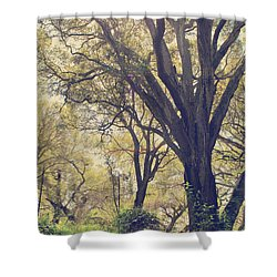 Brightening Up The Day Shower Curtain by Laurie Search