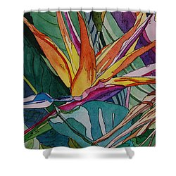 Brillant Bird Of Paradise Shower Curtain