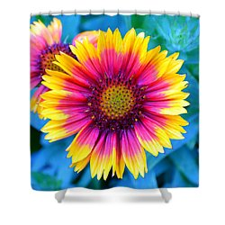 Shower Curtain featuring the photograph Brilliance by Deena Stoddard