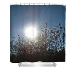 Brilliance In The Grasses Shower Curtain