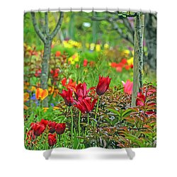 Brilliance Of Burgundy Shower Curtain