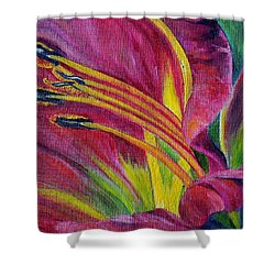 Brilliance Within Shower Curtain by Marilyn  McNish