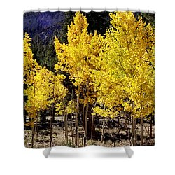 Brilliant Aspens Shower Curtain