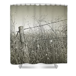 Brimming Shower Curtain