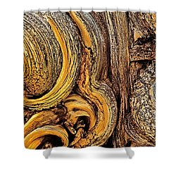 Shower Curtain featuring the photograph Bristlecone Pine Bark Detail White Mountains Ca by Dave Welling